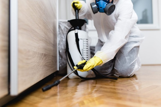 Why is pest control needful?