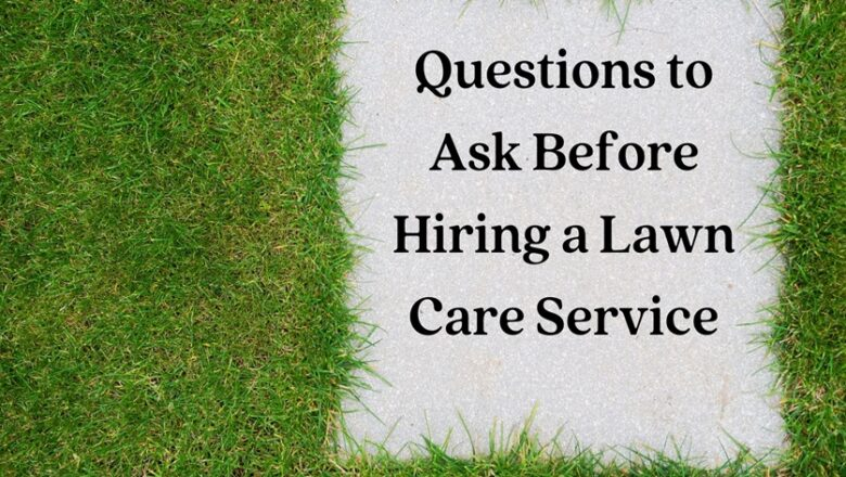 Questions to Ask Before Hiring a Lawn Care Service
